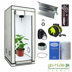 Starterset HOMEbox® Ambient Q60+ Taifun ESL 85 W Blüte