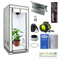 Starterset HOMEbox® Ambient Q60+ Taifun ESL 125 W Blüte