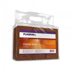 Plagron Cocos Brix 6 Stk