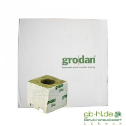 Karton Grodan Steinwollwürfel 7,5 x 7,5 cm gr. Loch